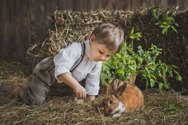 使用与动物6056的孩子 库存照片