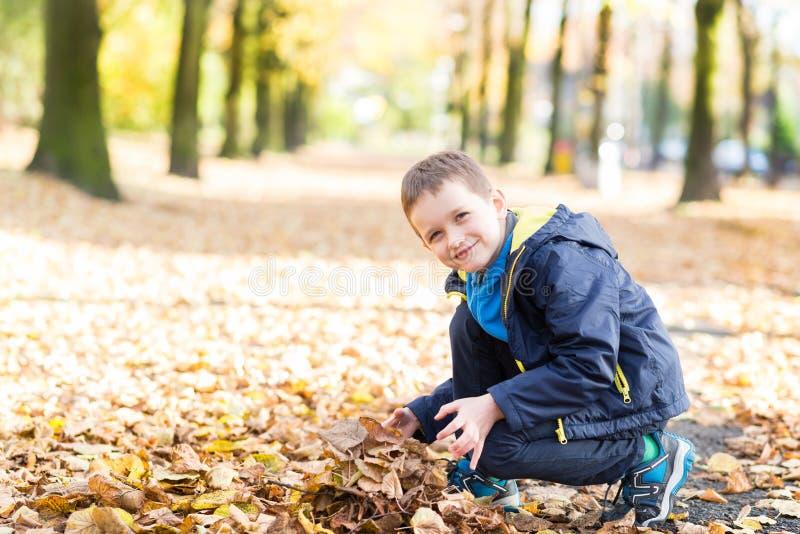 使用与叶子的愉快的微笑的小男孩 库存图片