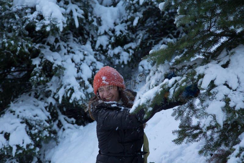 使用与在一个多雪的山地形的雪的愉快的微笑的女性有冷杉木的 免版税库存照片