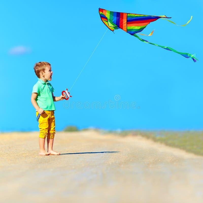 使用与在夏天领域的风筝的愉快的男孩 免版税图库摄影
