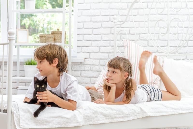 使用与在白色床上的猫的三个小愉快的孩子在h 库存图片