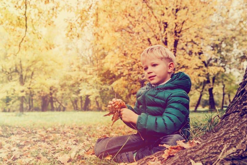 使用与在秋天自然的叶子的小男孩 库存照片