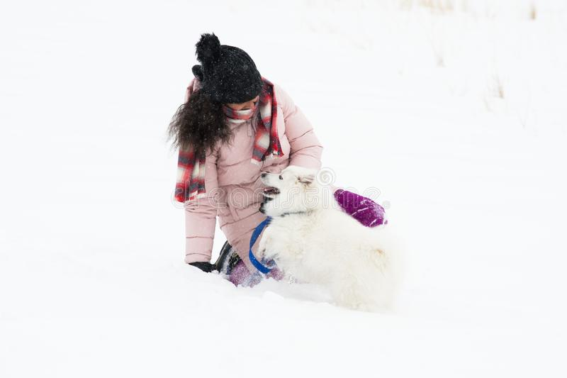 使用与在雪的狗 免版税库存照片