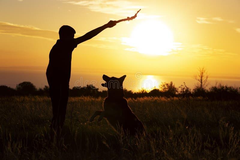 使用与在领域在日落,投掷一根木棍子和解决与宠物的男孩的一条狗的年轻人的剪影 免版税库存照片