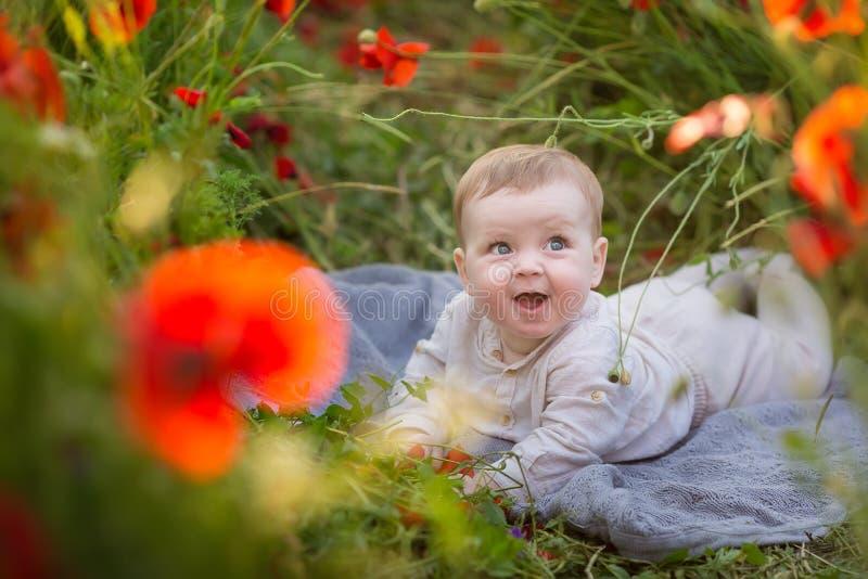 使用与在麦田的红色鸦片花的可爱的女婴男孩 摆在土气减速火箭的帽子的婴孩穿舒适礼服 免版税库存图片