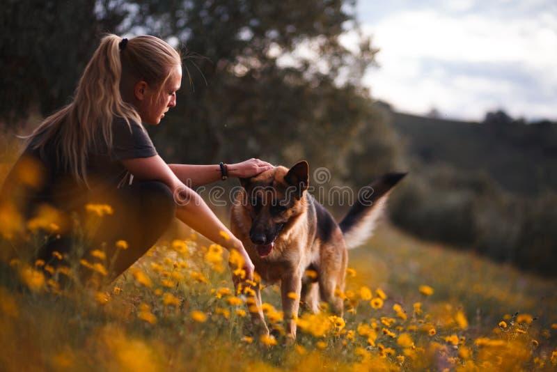 使用与在黄色花的领域的德国牧羊犬狗的白肤金发的女孩 免版税库存图片