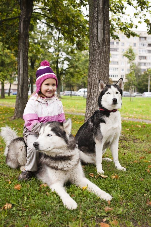 使用与多壳的狗的小逗人喜爱的女孩外面在绿色公园 图库摄影