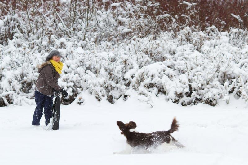使用与她的在雪的狗的女孩 库存图片