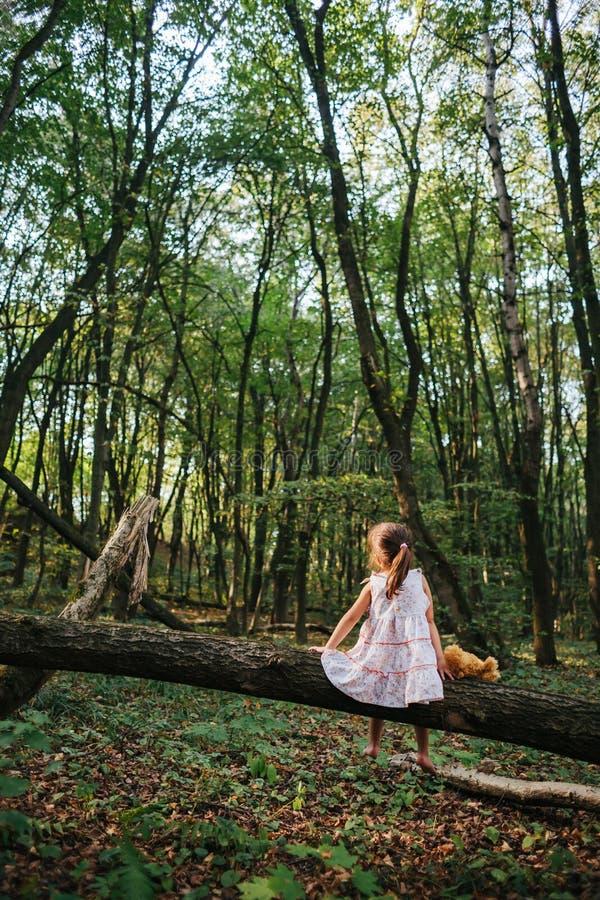 使用与她的熊的小女孩在森林 坐的女孩  免版税库存图片