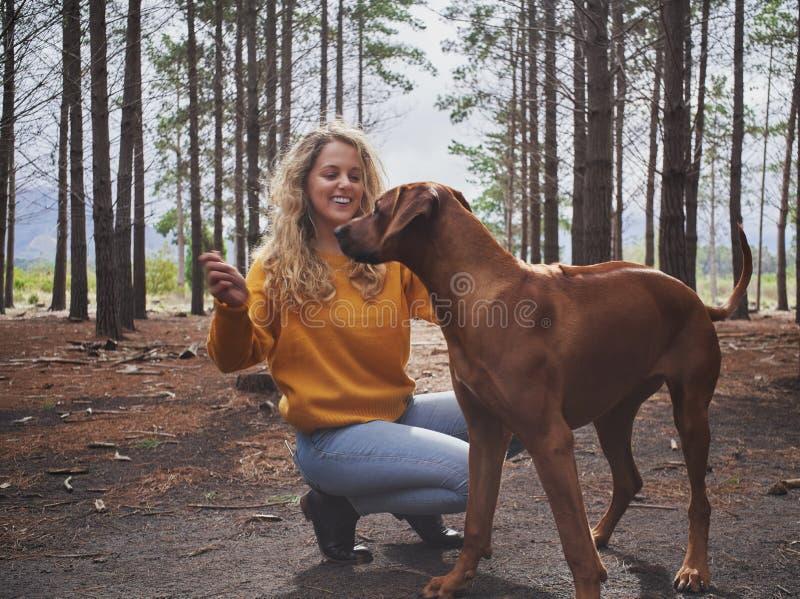 使用与她的狗的微笑的年轻女人在森林里 免版税库存图片