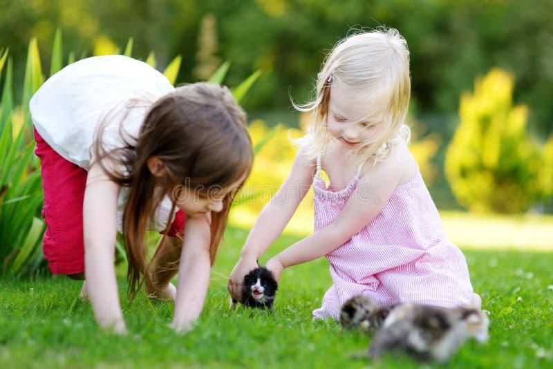 使用与小新出生的小猫的两个可爱的妹 免版税库存照片
