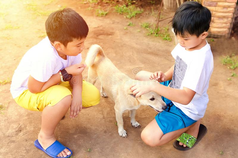使用与爱犬的男孩 免版税库存图片