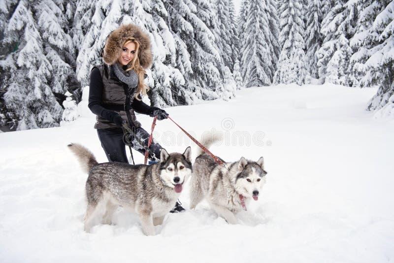 使用与狗的愉快的少妇 免版税库存图片