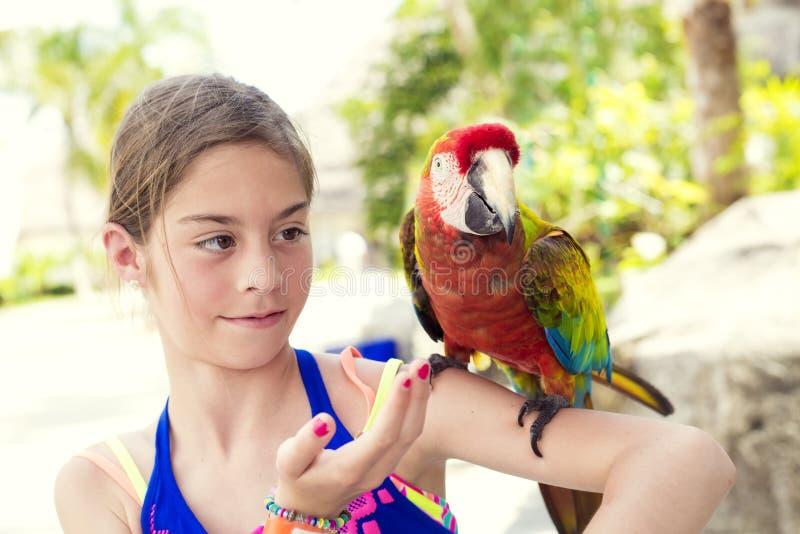 使用与猩红色金刚鹦鹉鹦鹉的逗人喜爱的小女孩 免版税库存照片