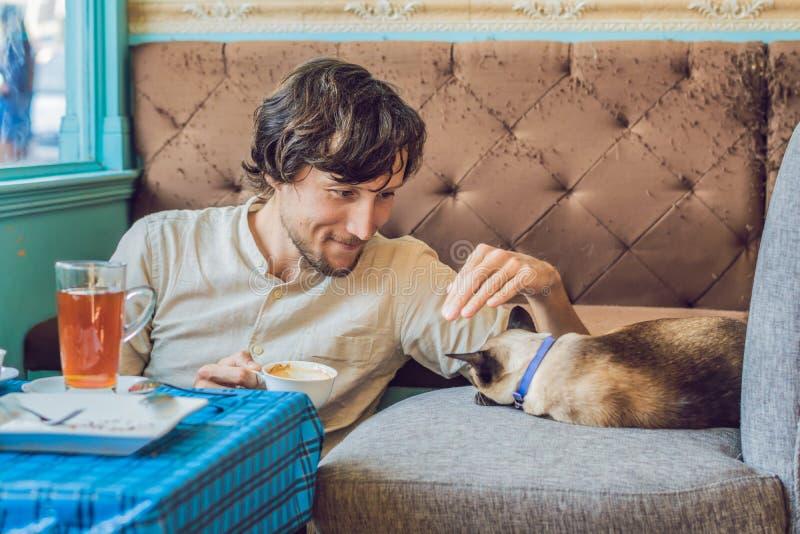 使用与猫和饮料咖啡的英俊的年轻人画象  库存照片