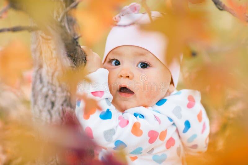 使用与秋叶的小女孩在公园 库存图片