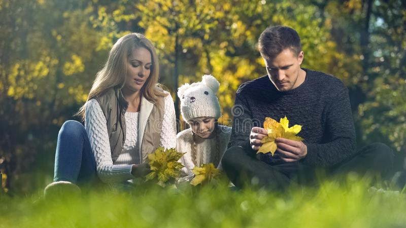 使用与秋天黄色叶子的家庭在美丽的公园,一起花费时间 免版税库存照片