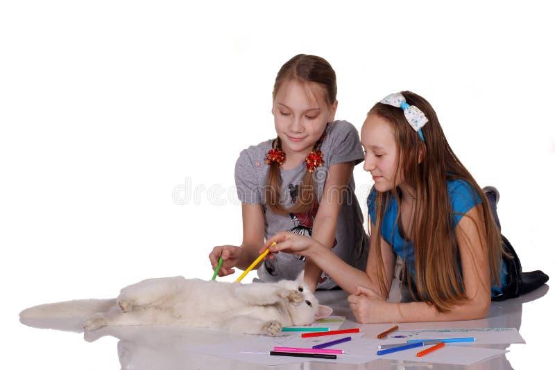 使用与逗人喜爱的滑稽的小猫的两个孩子 库存图片