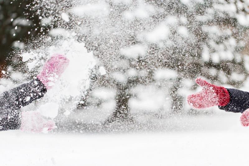 使用与雪的愉快的朋友在冬天 免版税库存照片