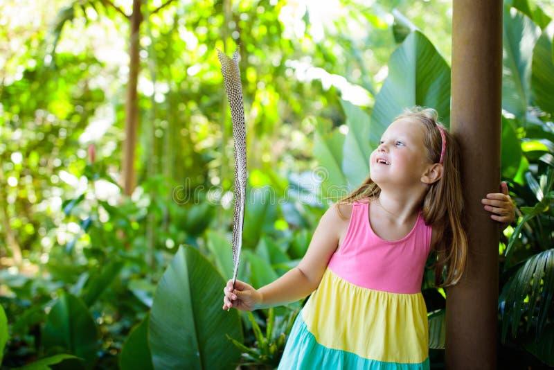 使用与鸟羽毛的孩子 在动物园的孩子 库存照片
