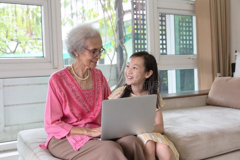 使用便携式计算机和坐的祖母和孙女 免版税图库摄影