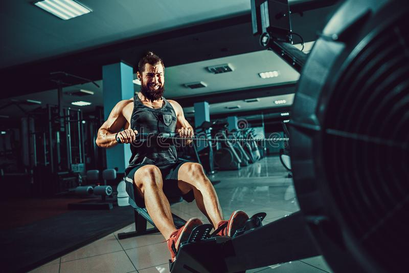 使用划船器的肌肉适合人在健身房 库存照片