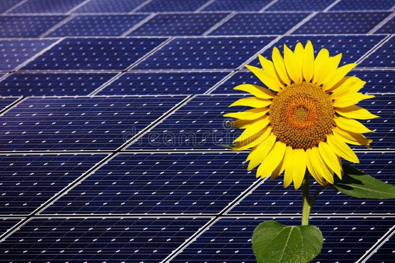 使用可更新的太阳能的能源厂 图库摄影