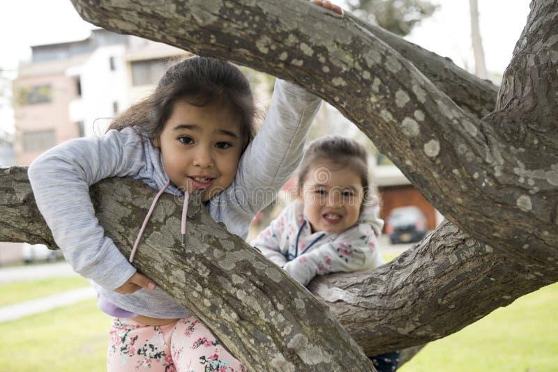 使用在公园树的两个妹户外 库存图片