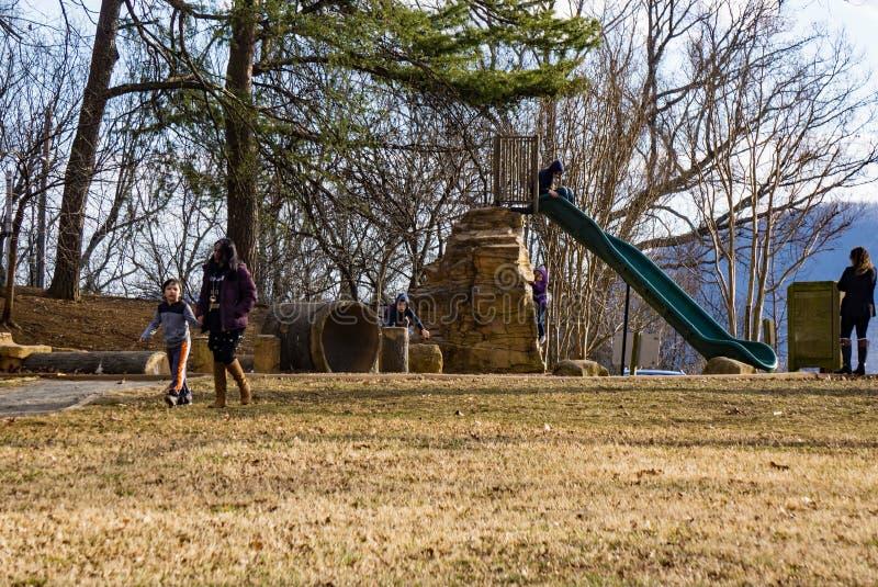 使用在公园的家庭 免版税库存照片