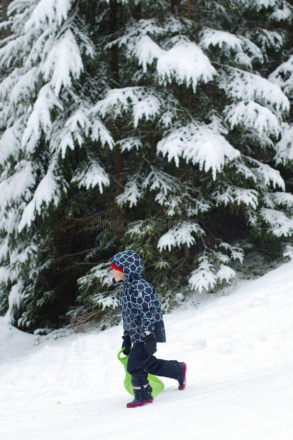 使用在冬天步行的愉快的男孩本质上 孩子跳和获得乐趣在冬天公园 图库摄影