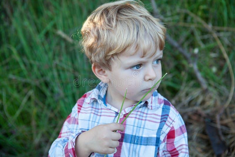 使用在森林里的甜小孩男孩 库存照片