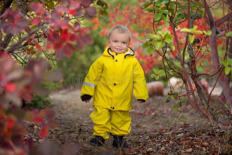 使用在多雨夏天公园的小男孩 有五颜六色的彩虹伞、防水跳跃外套和的起动的孩子  免版税库存照片