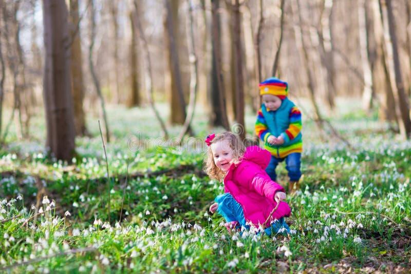 使用在春天森林里的孩子 免版税库存图片