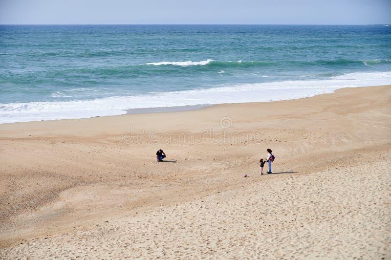 使用在春天的海滩的家庭 免版税库存图片