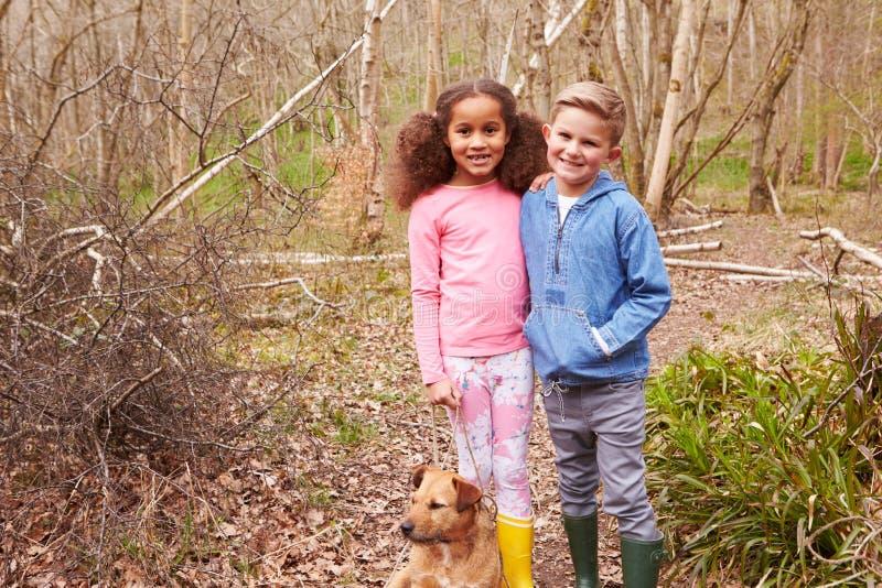 使用在有狗的森林里的两个孩子 免版税图库摄影