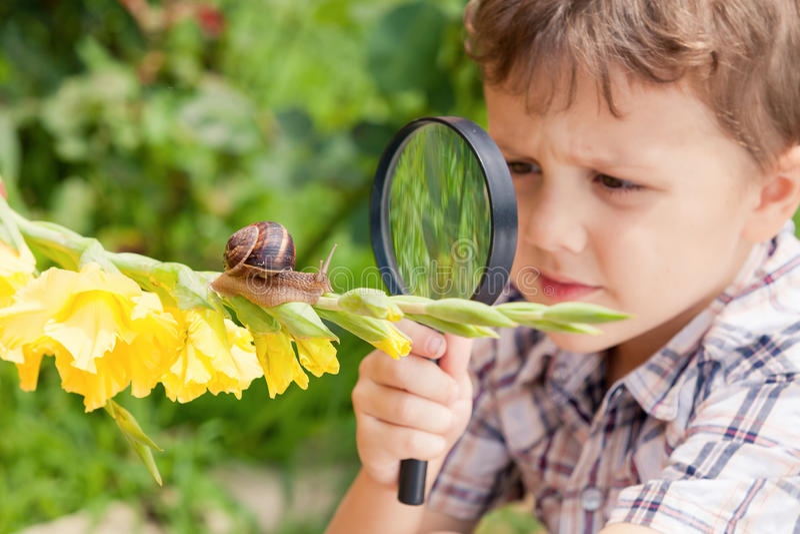 使用在有蜗牛的公园的愉快的小男孩在天时间 库存照片