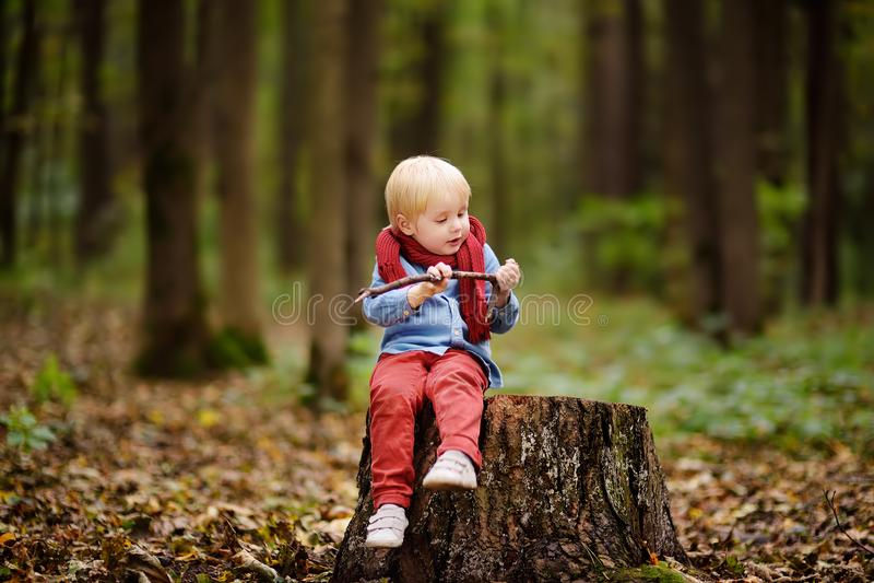 使用在木树桩的小男孩在漫步期间在森林里 库存照片