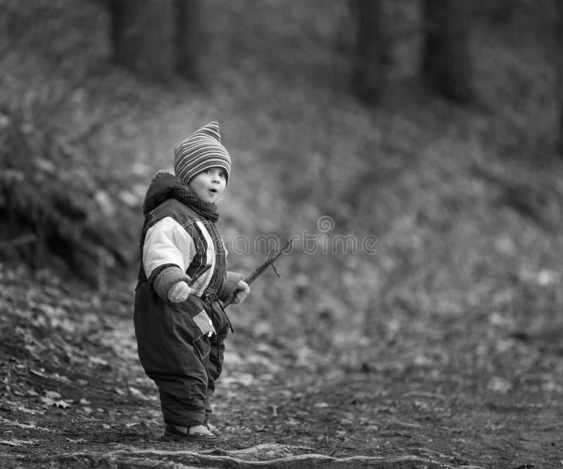 使用在森林里的小白种人男孩在早期的春天 库存图片
