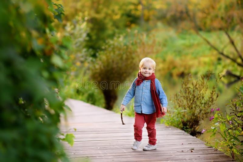 使用在漫步期间的小男孩在森林里 库存图片