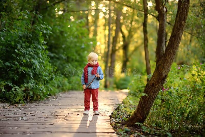 使用在漫步期间的小男孩在森林里 图库摄影