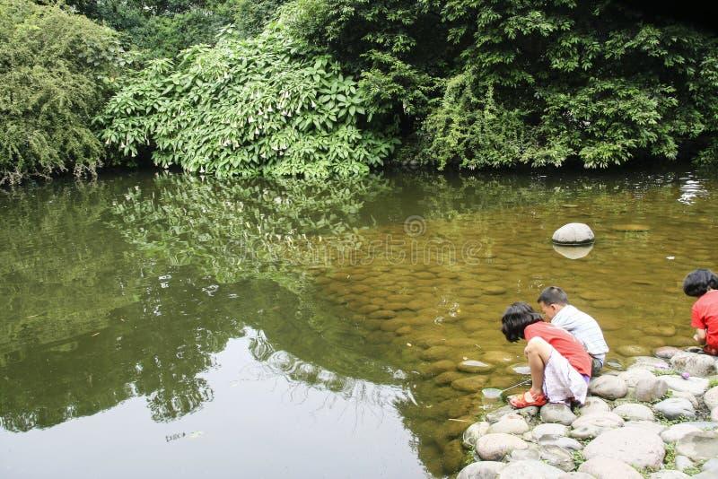 使用在生存水中的孩子从事园艺,成都,瓷 库存照片