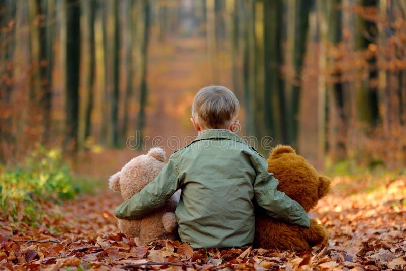 使用在秋天公园的一个小男孩 免版税图库摄影