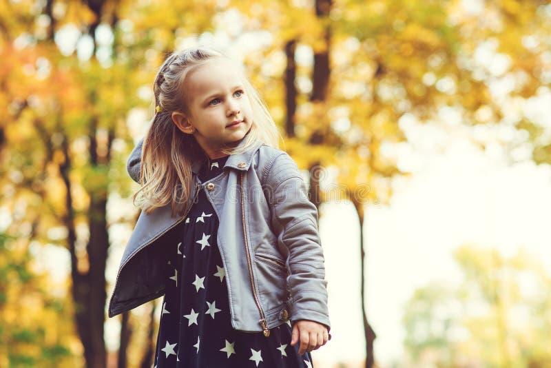 使用在秋天公园的逗人喜爱的小女孩 使用与落叶的愉快的孩子 秋天哄骗时尚 愉快的童年 时兴 图库摄影