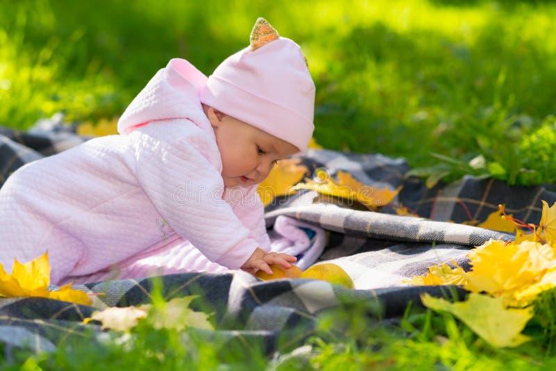 使用在秋天公园的逗人喜爱的矮小的女婴 库存图片