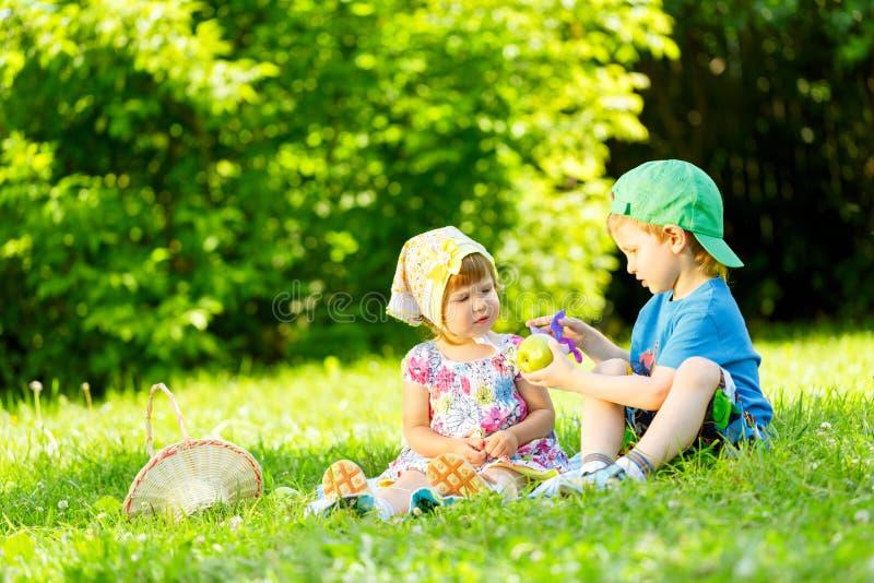 使用在草的小男孩和女孩 免版税库存图片