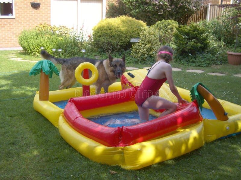 使用在水中的狗和孩子 免版税库存图片