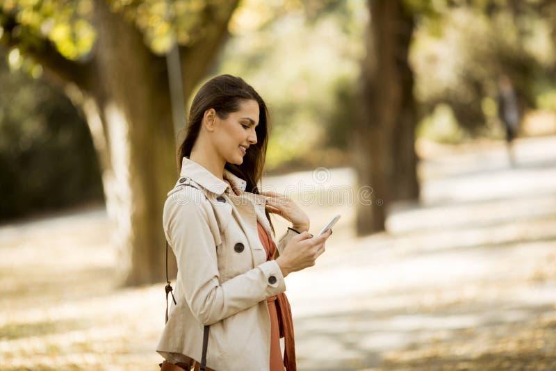使用手机的年轻女人在秋天公园 库存图片