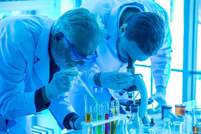 使用显微镜的年轻科学家研究有准备试管和分析在实验室的老人监督员的 ?? 图库摄影