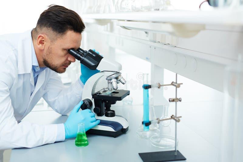 使用显微镜的现代科学家在实验室 免版税库存照片
