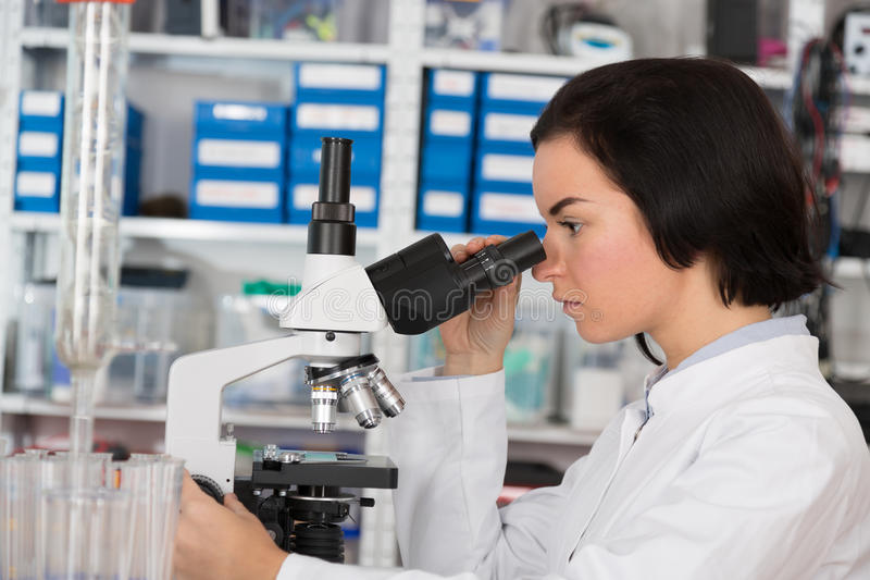 使用显微镜的科学家少妇在科学实验室 免版税库存照片